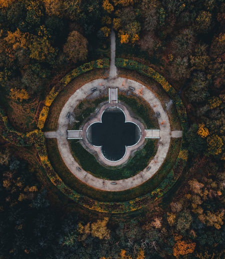 High angle view of plants during autumn