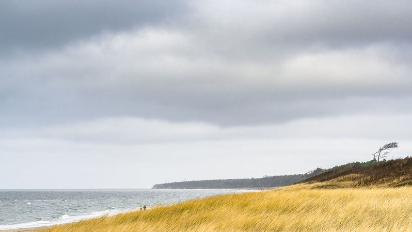 Baltic Sea Baltic Sea Winter Balticsea Beach Beach Day Beach Life Beach Photography Beach Time Beach Walk Beachphotography Beauty In Nature Darß Fischland Fischland-darß-zingst Grass Horizon Over Water Landscape Ostsee Ostseeküste Ostseestrand Sea Seaside Tranquil Scene Water Zingst
