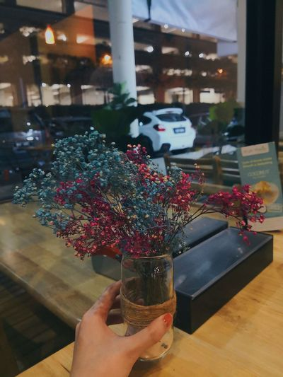 I'm both happy and sad. Indoor Photography Plants And Flowers Natural Beauty Nature Collection Babybreath Minimialistic Lovely Day Lovelynatureshots View Dinner Date Thursdaynight Cafés Girlsday Vscocam VSCO Happyday Happiness Real People One Person Window Holding Human Hand Food And Drink Human Body Part Indoors  Flower Freshness Lifestyles