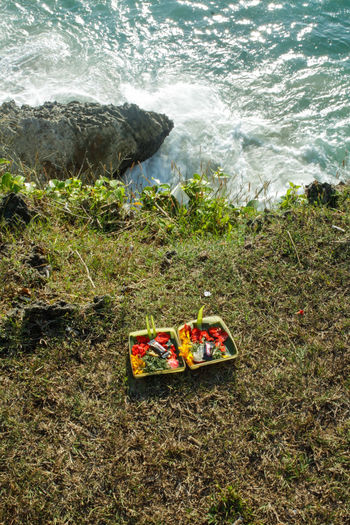 Daily offerings. Beach Day Food Food And Drink Grass High Angle View Land Motion Nature No People Offerings Outdoors Rock Rock - Object Sea Solid Sport Water Wave