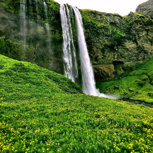 Skogafoss Falls, Iceland Waterfall Iceland_collection Icelandtrip Iceland2016 Enjoying Life Beautiful Treammarlaandrebecca Thingsiwanttoremember Lovemylife