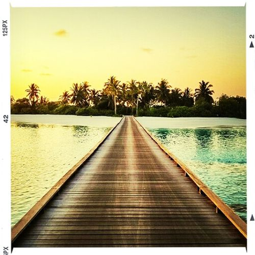 Boardwalk. Relaxing Taking Photos Hello World First Eyeem Photo