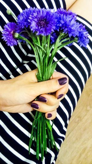 Sony Xperia Flower Beauty In Nature Nature Flower Head Day Vasilki Neon Life EyeEm Berlin Love