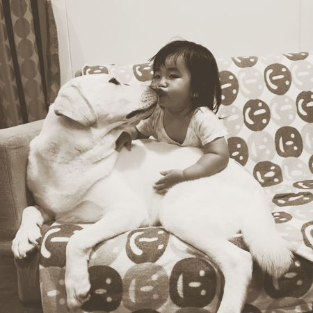 Baby And Dog Kiss Dog And Baby Dogs Of EyeEm Baby Photography Labrador Retriever Dogstagram