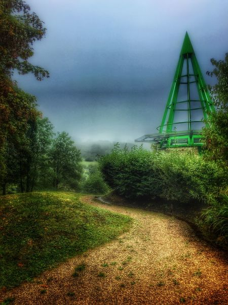 Tree Fog Tranquility Tranquil Scene Scenics Nature Beauty In Nature Green Color The Way Forward HDR EyeEm Best Shots Outdoors Saarland