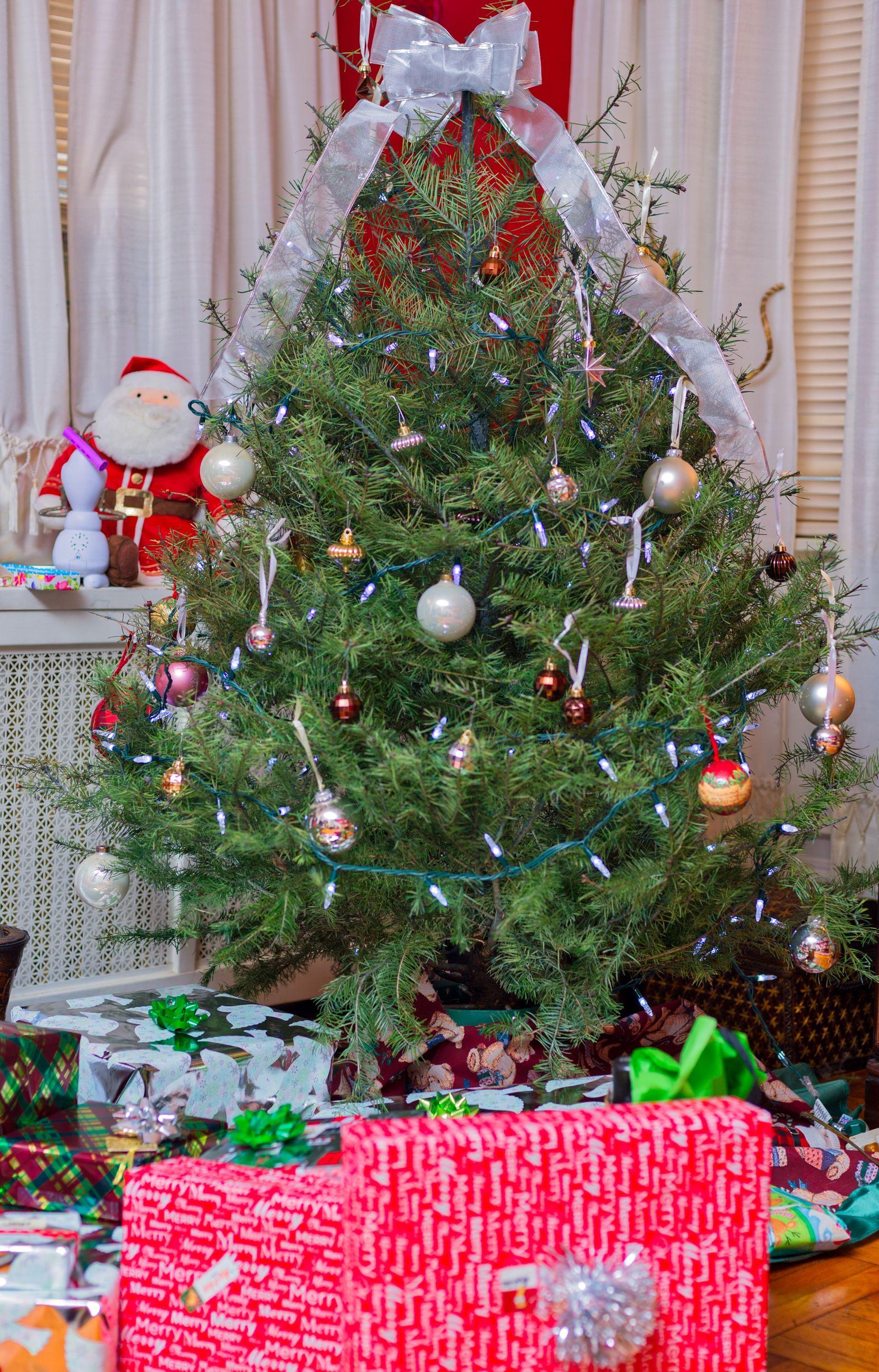 christmas, christmas tree, celebration, christmas decoration, tradition, christmas ornament, tree, holiday - event, decoration, christmas lights, no people, christmas present, celebration event, gift, vacations, indoors, tree topper, illuminated, christmas stocking, close-up, christmas bauble, day