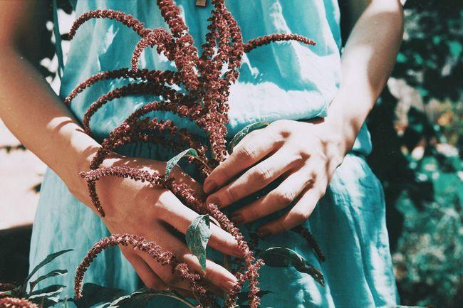 Blossom girl The Still Life Photographer - 2018 EyeEm Awards Human Hand Midsection Women Hand Human Body Part Close-up