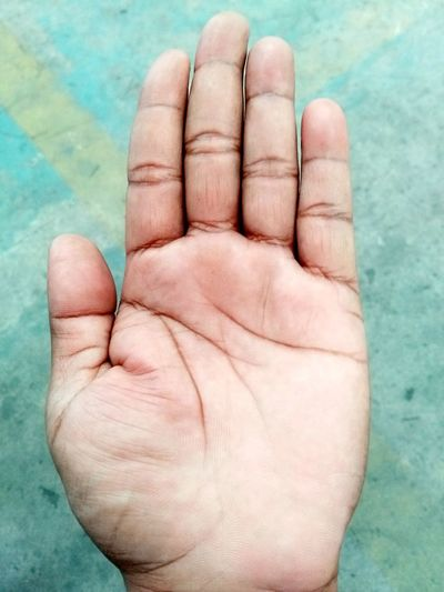 Human Body Part Human Hand One Person People Close-up Business Adult Indoors  One Man Only Day Adults Only