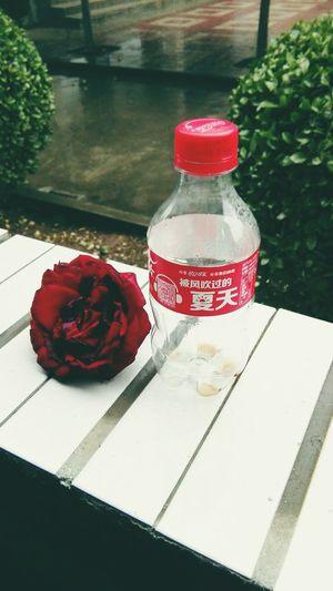 Best Memory ,