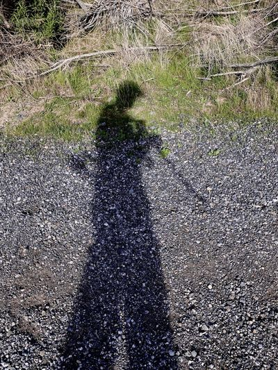 Shadow of person on field