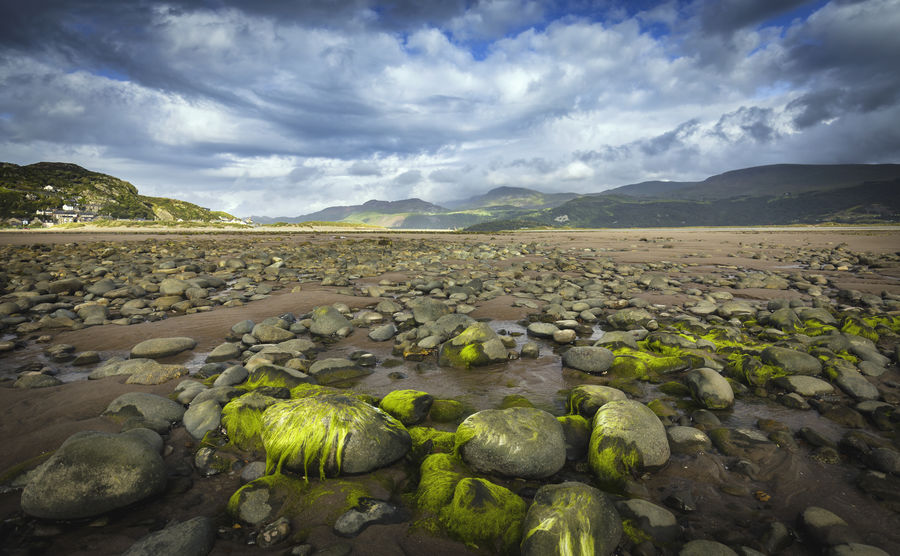 Scenic Coastal Scape at Low Tide with Green Moss Covered Stones Landscape_Collection Wales Wales UK Beauty In Nature Cloud - Sky Clouds And Sky Coast Coastal Town Day Landscape Landscape_photography Landscapes Low Tide Moss Mountain Mountain Range Nature No People Outdoors Scenic View Scenics Sky Stones Tourism Water