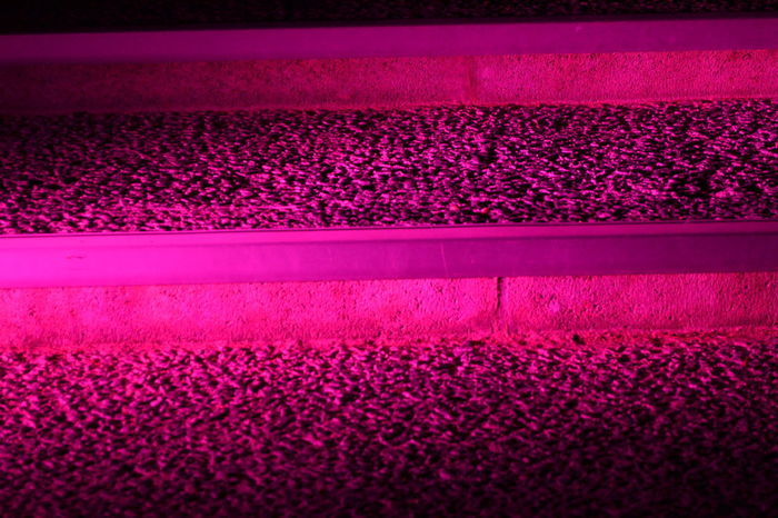 Full Frame Illuminated Indoors  Lighting Equipment Illuminated