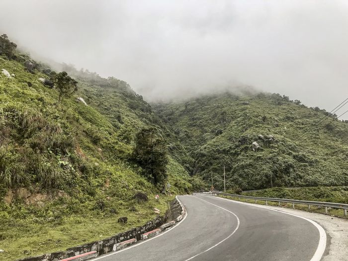 Driving Hai Van Pass Leading Lines Vietnamese Nature Beauty In Nature Nature Tree Cloud - Sky Overcast Fog Slope Mountain Road Mountain Plant No People Road Transportation Nature Day Tree Beauty In Nature The Way Forward Tranquility Direction Growth Green Color Outdoors Environment Marking Sign