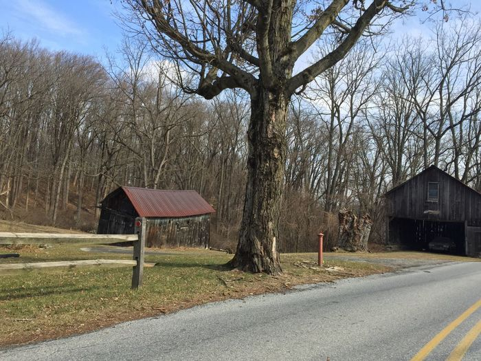 Parksburg Pennsylvania Tree Bare Tree Sky Built Structure No People Day Nature Outdoors Architecture