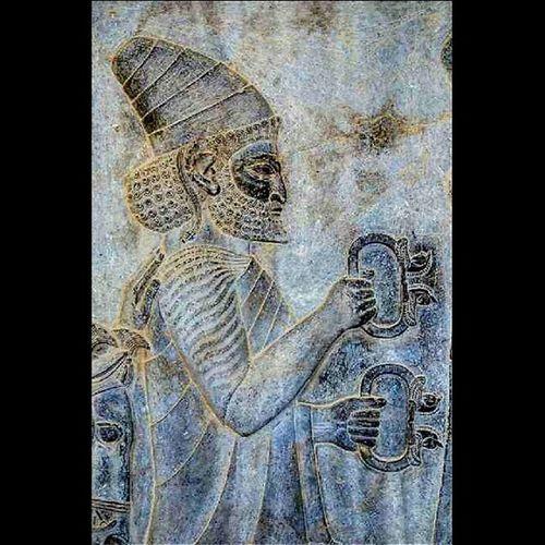 فرستاده یکی از ساتراپ های هخامنشی در حال بردن هدیه به خدمت پادشاه . پرسپولیس مرودشت فارس Persepolis Marvdasht Fars Iran