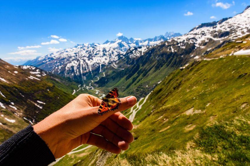 Grimselpass Furkapass Passhöhe Wallis Mountain Nature Beauty In Nature Outdoors Scenics Myswitzerland Landscape Mountains Sky Butterfly