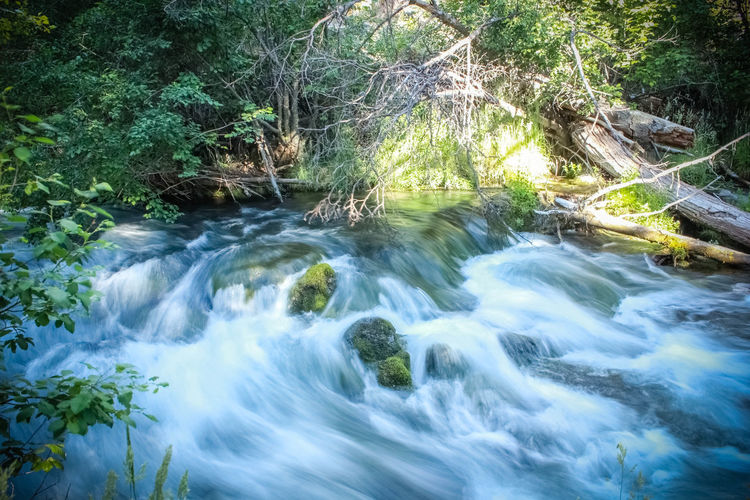 Rushing Water Hat Creek Flowing Water T3iPhoto taken at Lassen National Park in Northen California by Kyle Nelson follow4foll