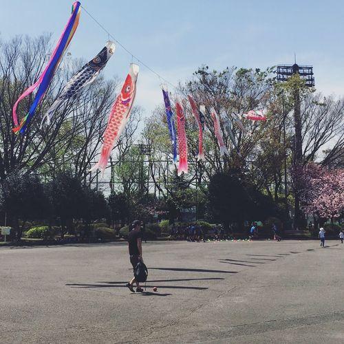Flag Day Sky Japan Fish Fishflag