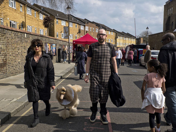 A man, a woman and a dog walking in Portobello Road on 15th April 2018 in London, United Kingdom. Portobello Road is a hub for artists and people from the media industry. This part of Royal Borough of Kensington and Chelsea and is very lively and colourful, especially during market days. London Street Nottinghill Portobello Market Market Woman Man Fashion Style Poodle Petal People Outdoors Group Of People