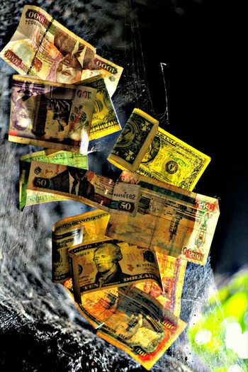Wealth Finance Paper Currency Currency Bills On A Cob Web! No People Close-up Indoors  Black Background Day Bestsellers