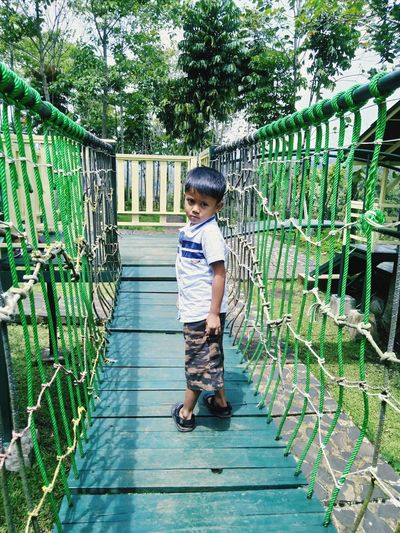 Portrait of boy standing on footbridge against trees