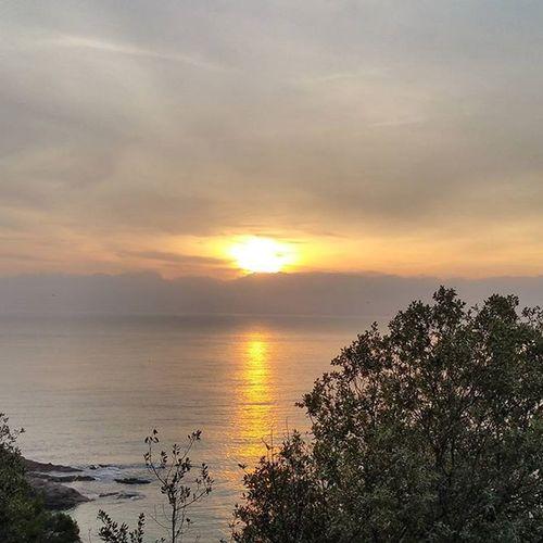 Ara si que si… ViuLloret Viulacostabrava Santacristina Sardanesalalba2016 AlbadaSardanesSantaCristina2016 Nuriss_tag Igcostabrava IG_AMALFICOAST Estaes_playas Sunset_stream Sunsets_fox Sunrise_sunsets_aroundworld WORLD_BESTSKY Ok_Sky