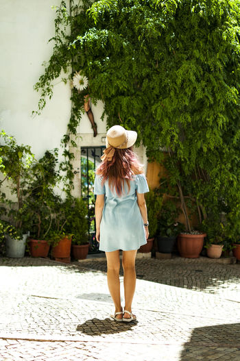 Rear view of woman wearing hat against trees