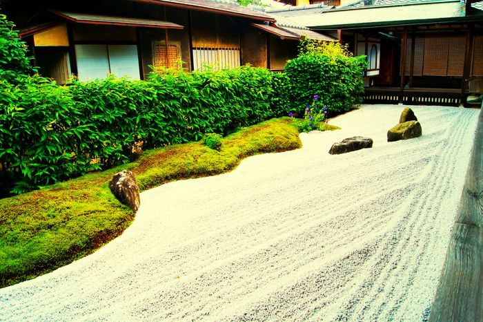 Taking Photos Relaxing Enjoying Life EyeEm Best Shots Traveling 京都 OpenEdit 禅 Photo Around You 京都市