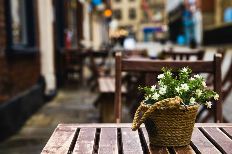 Al fresco dining Al Fresco Arrangement Cafe City Close-up Day Dining Empty Flower Focus On Foreground Growth Nature No People Outdoors Plant Potted Plant Selective Focus Streetphotography Wood - Material Wooden Hidden Gems