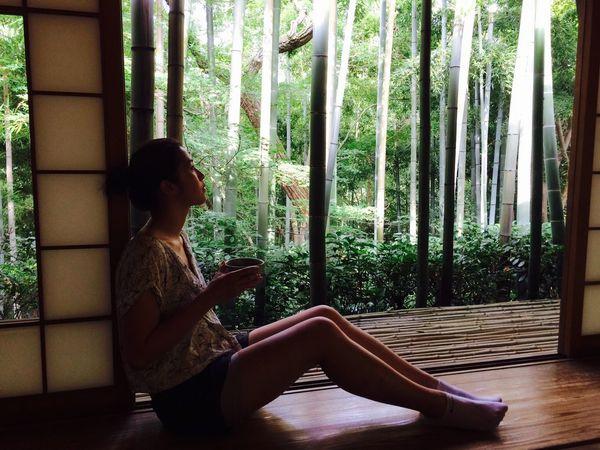 Bamboo iday]ered green tea]Ryokan Japan ay Holiday Socks EyeEm Best Shots First Eyeem Photo