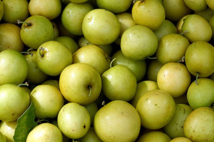 Jujube is very popular in Thailand. Sweet taste slightly sour. Jujube  Jujube Forest Jujubes Jujube Fruit Jujube Tree Jujube Yummy Fruit Jujubeach Jujubeberry Jujubee