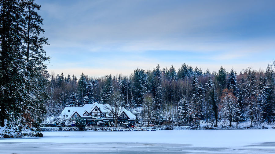 Ein Wintermorgen am Bergsee, Januar 2017. Architecture Bare Tree Beauty In Nature Built Structure Clouds And Sky Cold Cold Temperature Frozen Frozen Lake Landscape Morning Nature No People Outdoors Sky Snow Tree Weather Winter
