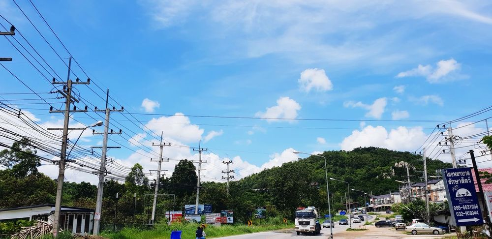Tree Cable Electricity  Sky Grass Cloud - Sky