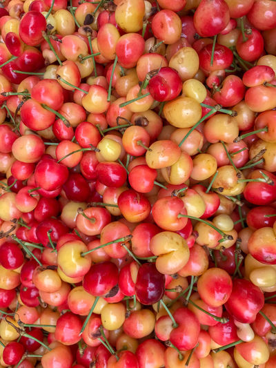Cherries Farmers Market Abundance Backgrounds Choice Close-up Directly Above Food Food And Drink Freshness Fruit Full Frame Healthy Eating Heap High Angle View Large Group Of Objects Market No People Rainier Cherries Red Retail  Ripe Vegetable Wellbeing