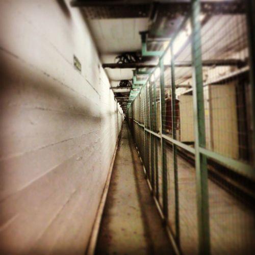 ~esos momento donde la claustrofobia no es bien venida ~ Bajotierra Underground Parqueavellaneda Caba bsas argentina
