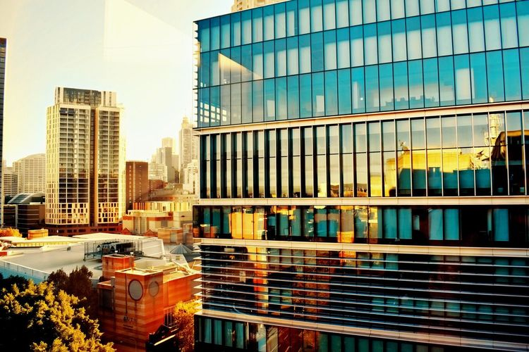 City life Sun Views Picoftheday EyeEm EyeEm Gallery Photography EyeEm Selects Architecture Built Structure Building Exterior Building City Modern Office Building Exterior Glass - Material Reflection No People Office Day Skyscraper Nature Window Outdoors Tall - High Sky Sunlight Residential District