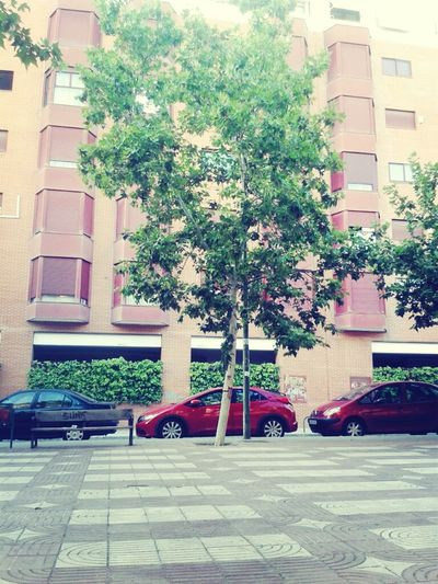 #summer#madrid#lacoma