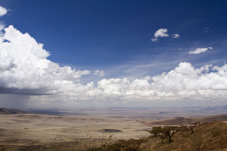 Stormy clouds build up near the border of the Serengeti National Park in Tanzania Storm Stormy Clouds Arid Climate Beauty In Nature Cloud - Sky Clouds Day Horizon Over Land Landscape Nature No People Outdoors Scenics Sky Tranquil Scene Tranquility Water