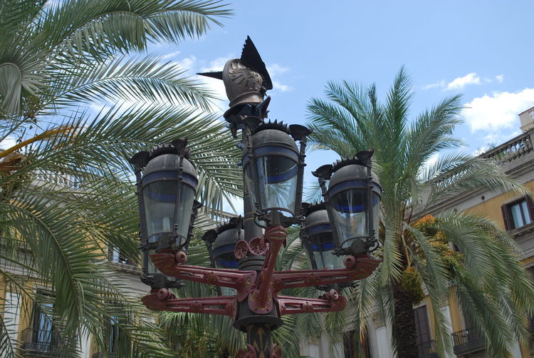 Architecture Barcelona Barcelona, Spain Building Exterior Built Structure Catalonia Catalunya City Day Low Angle View No People Outdoors Palm Tree Sculpture Sky SPAIN Square Statue Tree