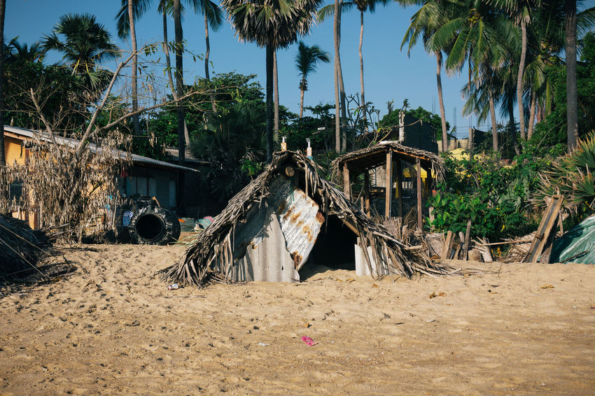 Travel in Sri Lanka Abandoned Adventure Architecture Beach Building Exterior Built Structure Day Discovery Dwelling Exotic Exploring House Hut Nature No People Outdoors Palm Tree Shack Sky Sri Lanka Travel Travel Photography Traveling Tree The Architect - 2017 EyeEm Awards Sommergefühle