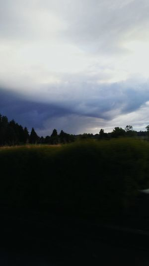 Oregonphotographer Oregon Sky Enjoying Life Willamette Valley Beauty In Nature Gods Art The Great Outdoors - 2016 EyeEm Awards Trees Trees And More Trees Rainy Days Feel The Journey Award Winning Photos Important To Me Important Moment
