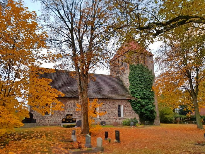 Architecture Autumn Beauty In Nature Built Structure Change Church Day Dorfkirche Weesow Grass Growth Leaf Nature No People Old Old Buildings Outdoors Tree Village
