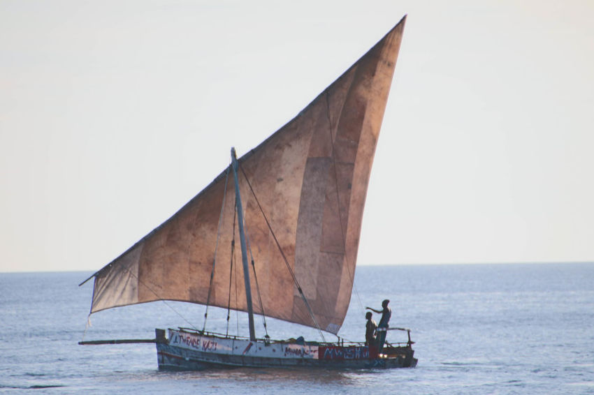 Traditional Sail Fishing Boat in Zanzibar Clear Sky Day Dhow Boat Fishing Horizon Over Water Nautical Vessel No People Outdoors Sail Boat Sailing Sea Sky Traditional Sail Boat