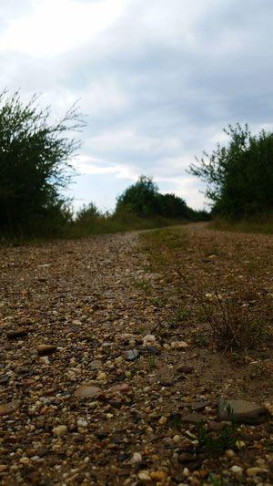 my way Stones