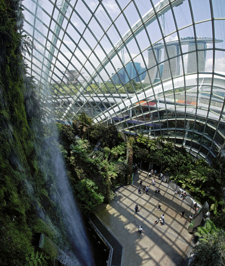 Singapore, Singapore - October 16, 2018: Inside the Cloud Forest Dome Gardens by the Bay in Singapore. On background the Marina Bay Sands hotel Singapore Cloud Forest Dome Flower Dome Gardens By The Bay Marina Bay Sands ASIA Waterfall Greenhouse Smart City Green Environment Conservation Exotic Flora Fern Plant Grass SuperTree Supertree Grove
