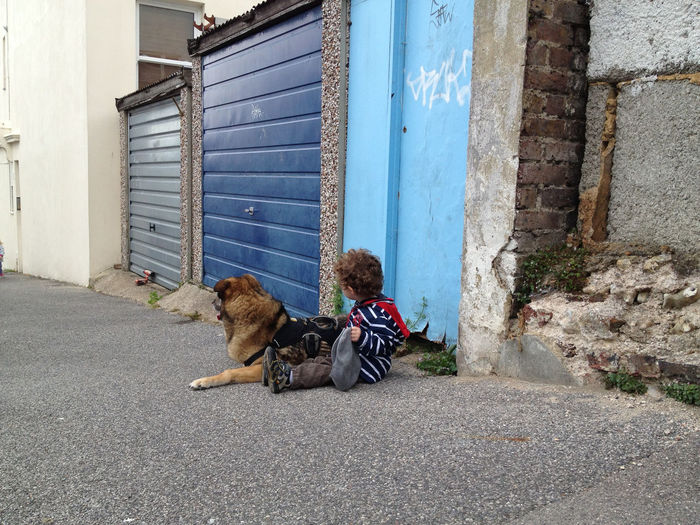 Streetwatch in Blue Blue Child Child With Dog Dog Dog With Child Exposed Bricks Garage Door Outdoors Pavement Relaxation Sidewalk Sitting Pet Portraits