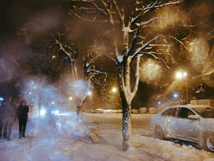 Illuminated bare tree in city during winter