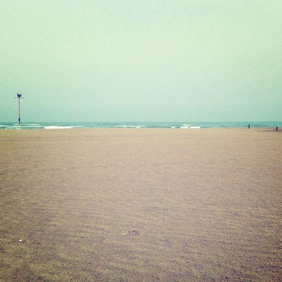 Un tu nel deserto Sea Beach Landscape Spring Adriatico Mare Spiaggia Adriatic