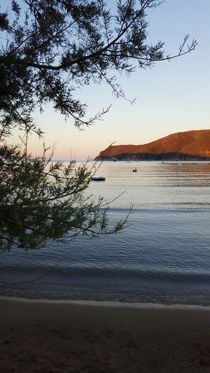 AlbaElba Beauty In Nature Vacations Beach Tranquil Scene Sunset Calm Sand Nature Tree Sea Water Scenics First Eyeem Photo