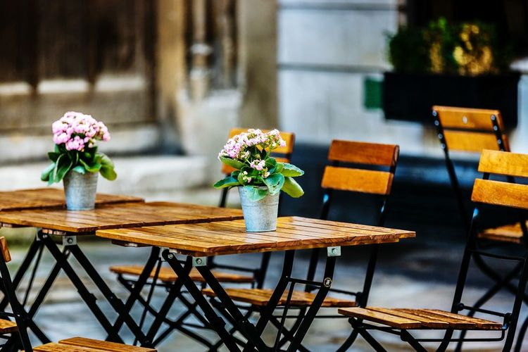 Flower Pots On Wooden Tables